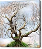 The Tree On The Top Of The Hill  Canvas Print