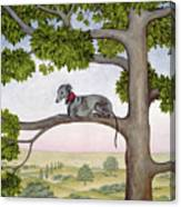 The Tree Whippet Canvas Print