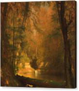 The Trout Pool Canvas Print