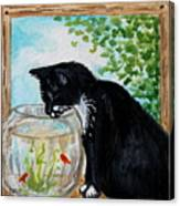 The Tuxedo Cat And The Fish Bowl Canvas Print