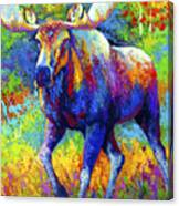 The Urge To Merge - Bull Moose Canvas Print