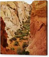 The Valley Of Fire 126 Canvas Print
