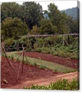 The Vegetable Garden At Monticello II Canvas Print