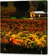 The Vines During Autumn Canvas Print