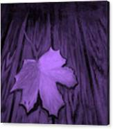 The Violet Leaf Canvas Print