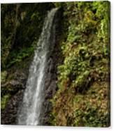 The Water Falling At The Yoro Waterfall In Gifu, Japan, November Canvas Print
