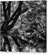 The Water Margins - Monochrome  Canvas Print