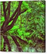The Water Margins - Nutclough Woods Canvas Print