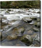 The Way A River Flows Canvas Print