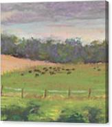 The West Cow Pasture Early Morning Canvas Print