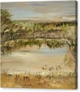 The Westfern Pond Canvas Print