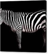 The White Stripes Canvas Print