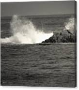 The Wild Pacific In Black And White Canvas Print