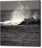 The Wild Pacific In Black And White Two Canvas Print
