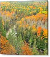 The Winding Manistee River Canvas Print