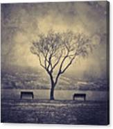 The Winter And The Benches Canvas Print
