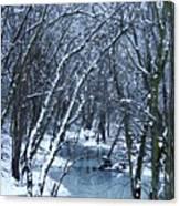 The Winter Stream  Canvas Print