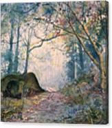 The Wishing Stone Canvas Print