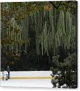 The Wollman Rink Canvas Print