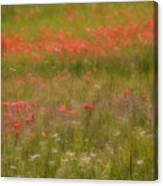 The Wonders Of Spring Canvas Print