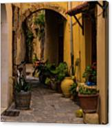 The Yellow Archway Canvas Print