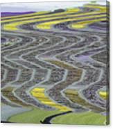 The Yellow Brick Road Canvas Print