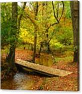 There Is Peace - Allaire State Park Canvas Print