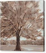 There's A Tree Canvas Print
