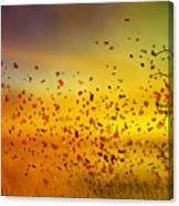 They Call Me Fall Canvas Print