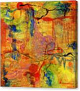 Thick Film Birefringence Canvas Print