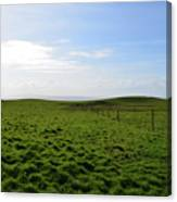 Thick Grass Field Abutting The Cliff's Of Moher In Ireland Canvas Print