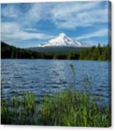 Thillium Lake And Mt Hood Canvas Print
