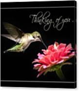 Thinking Of You Hummingbird Greeting Card Canvas Print