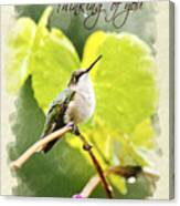 Thinking Of You Hummingbird In The Rain Greeting Card Canvas Print