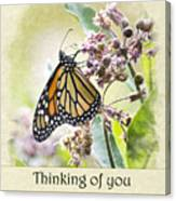 Thinking Of You Monarch Butterfly Greeting Card Canvas Print