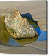 Third Study Of A Rock Canvas Print
