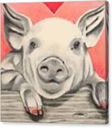 This Little Piggy... Canvas Print