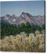 Thistledown In The Valley Canvas Print
