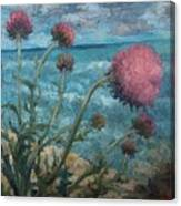 Thistles By The Sea Canvas Print