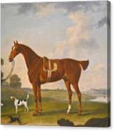 Thomas Egerton's Chestnut Hunter With A Groom And Two Hounds And A Terrier In A River Landscape Canvas Print
