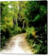 Thoreau Woods Canvas Print
