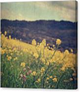 Those Lighthearted Days Canvas Print