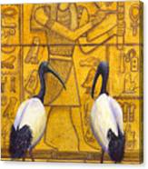 Thoth Canvas Print