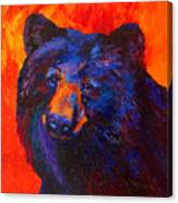 Thoughtful - Black Bear Canvas Print