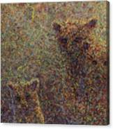 Three Bears Canvas Print