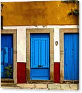 Three Blue Doors 1 Canvas Print