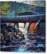 Three Bridges  Canvas Print