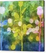 Three Buds Canvas Print