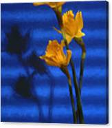 Three Cheers - Yellow Daffodils In A Red Bowl Canvas Print