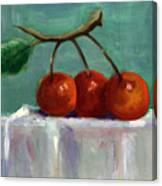 Three Cherries Canvas Print